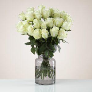 24 Fairtrade White Roses